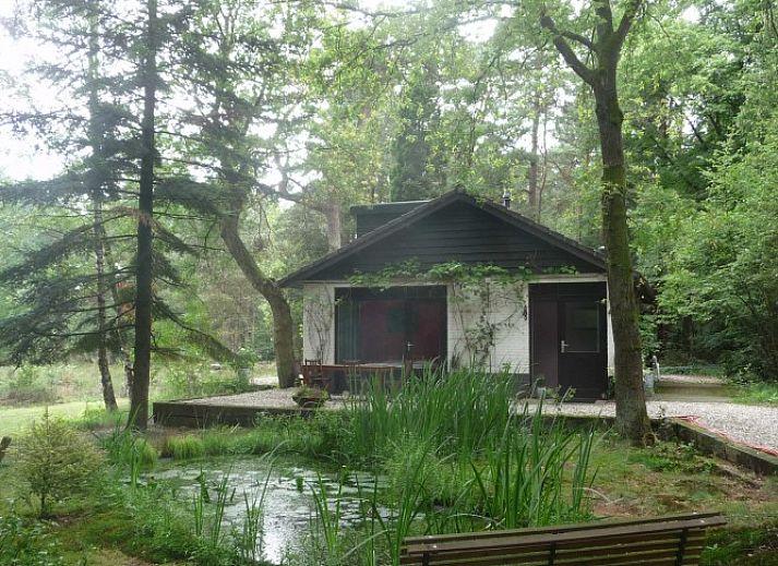 Vakantiewoning de woesterberg emst veluwe gelderland for Vakantiehuisje bos