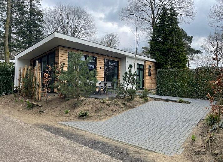 Chalet Landgoed De Scheleberg 11, Lunteren, Veluwe, Gelderland
