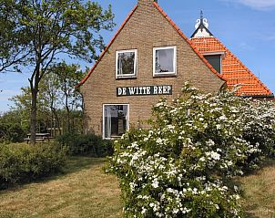 Guest house 0403187 • Holiday property Ameland • Het Woonhuis