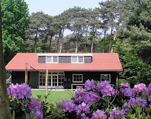 Guest house 412709 • Holiday property Kempen • Natuurhuisje in Luyksgestel