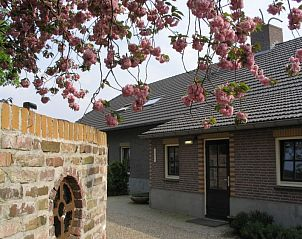 Guest house 431501 • Holiday property Noordoost Brabant • Laurenshoeve